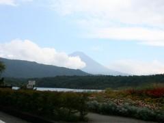 西湖を出たすぐの道路から。少し富士山の姿が…
