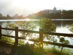 大きい池沿いに散歩道があり一周出来ます。