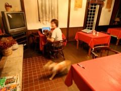 食堂ダイニングでは、インターネットも出来ます。