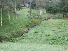小川があり、