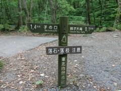 奥入瀬渓流沿いに様々な滝を見られる散策路がずっと続いています