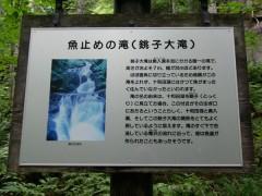 奥入瀬渓流の代表的な滝のようです