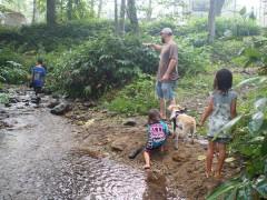 賑やかな川遊びも楽しいね〜