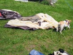 しばしテントの乾燥&荷物整理